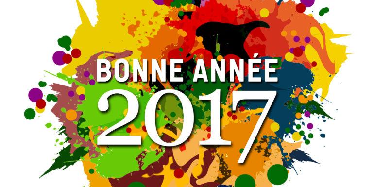 voeux-2017-ville-auxerre